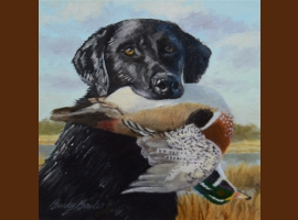 Black Lab with Wood duck