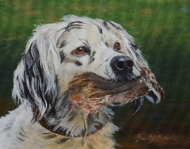 English Setter with Quail