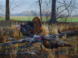 Gobblers on the Edge