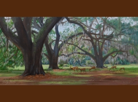Low Country Oaks
